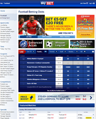 skybey online bookmaker